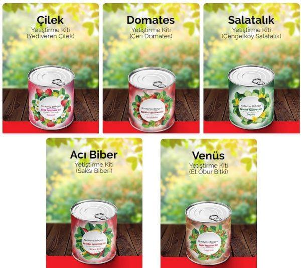Konserve - Salatalık (Çengelköy) Yetiştirme Kiti 2